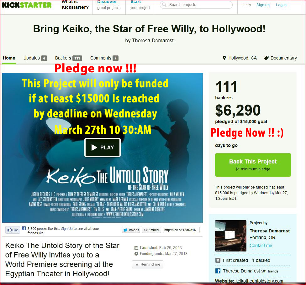 KEIKO KICKSTARTER PLEDGE NOW 8 final
